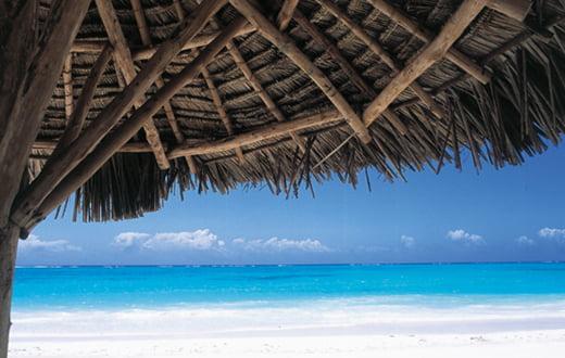 Zanzibar Africa Tours bd628904