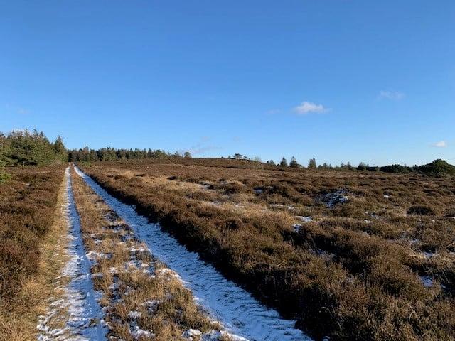 Ferie i Danmark Vandreture er populaert 7d374fec